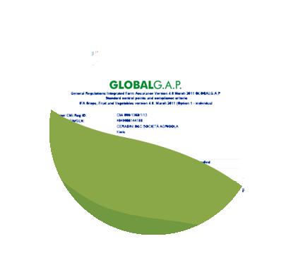 GLOBALGAP_CERADINI_B&C_Farm_Assurance_2018-2019