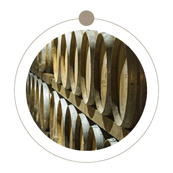 Wine Tour Garda Doc